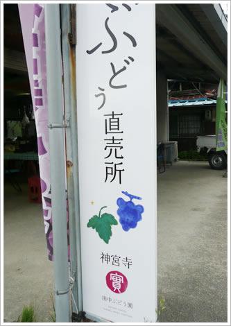 田中ぶどう園ぶどう直売所