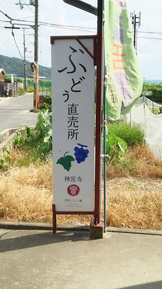 交野神宮寺田中ぶどう園