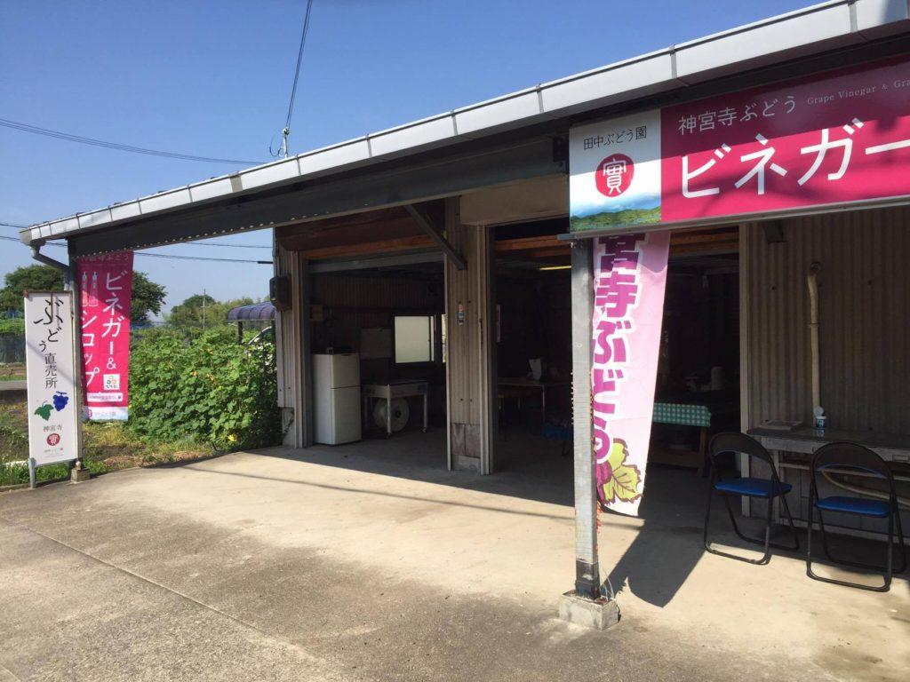 田中ぶどう園直売所