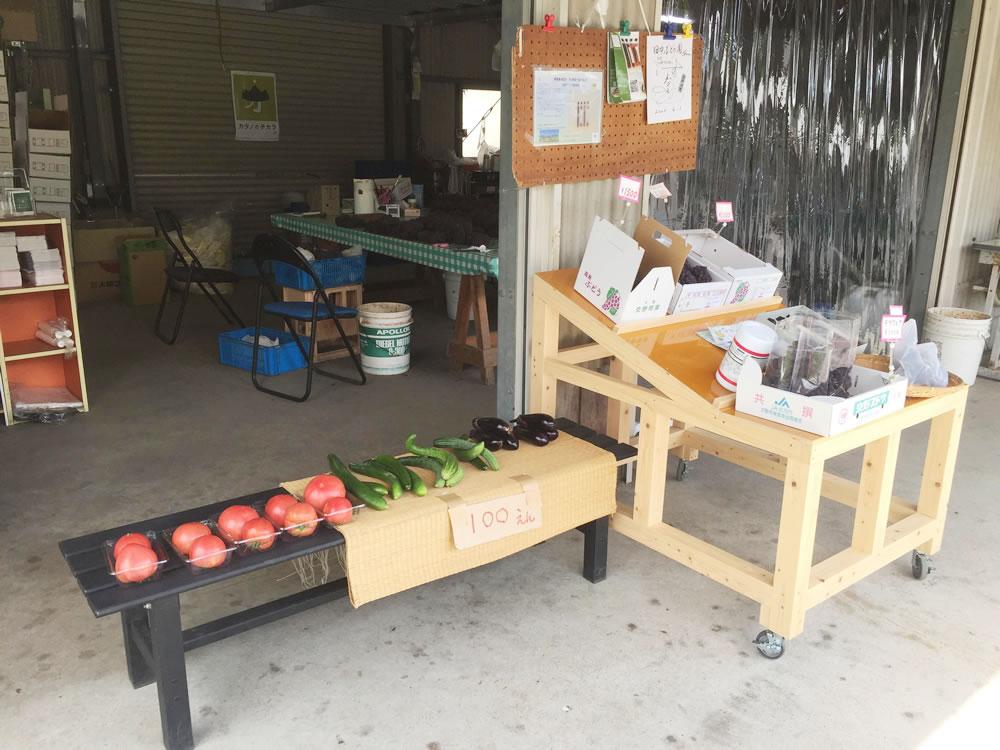 直売所では採れたての夏野菜も販売しています!