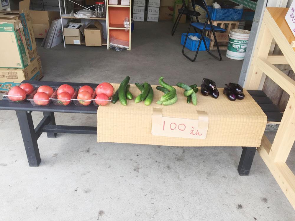 今は主に胡瓜、トマト、茄子、唐辛子を販売