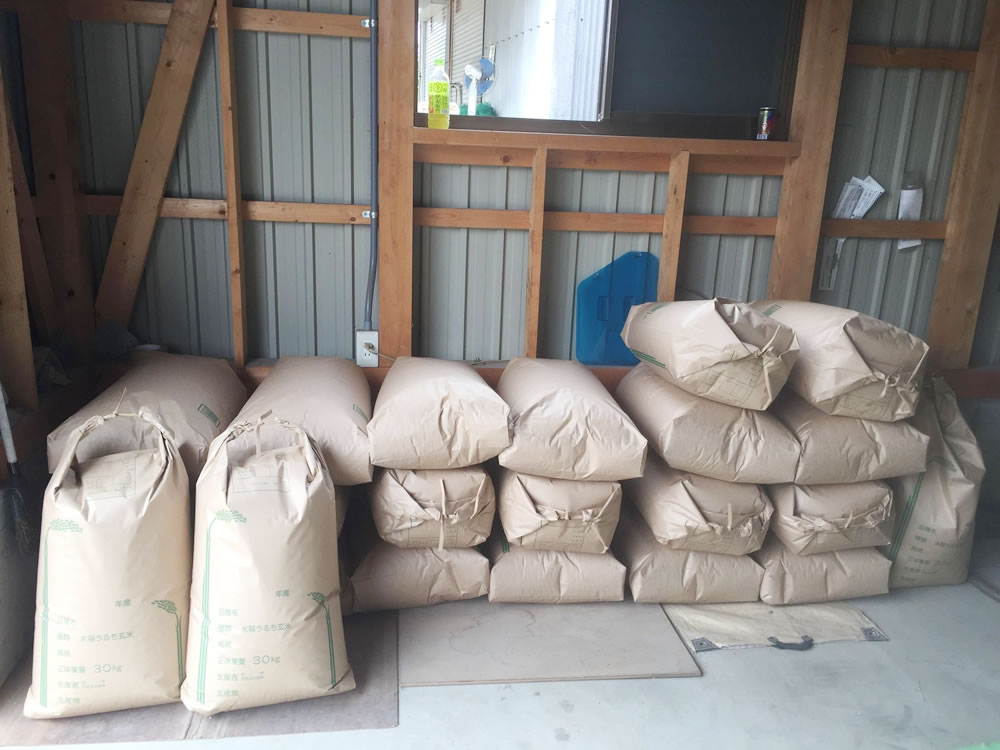 秋の実り、今年のお米の収穫はこれくらいに。